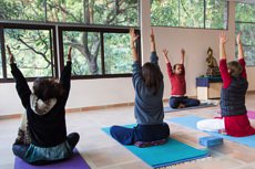 vedic_yoga_courses_300hrs