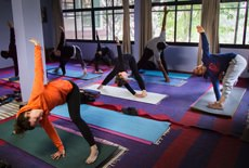 vedic_yoga_courses_500hrs